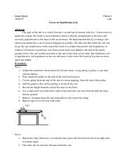 Physics Newtons second law lab - Google Docs.pdf