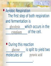 Biology 105 Respiration tutorial