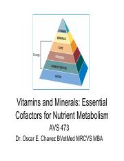 4_Vitamins and Minerals - Chapter 13(1).pdf