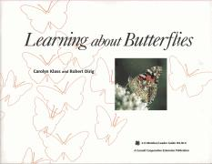 Learning-About-Butterflies-139-M-9-x4i021