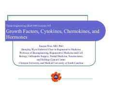 Lecture 15 growth factors
