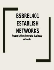 Presentation Promote Business networks.pptx