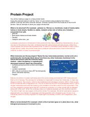 Protein Project.pdf