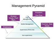 Management Structure & Managerial Functions