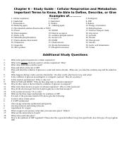 Chapter 6 Study Guide - Cellular respiration and metabolism