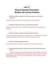 Natural Selection Lab Answers (1).pdf