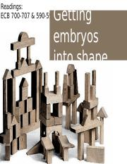 LECTURE 18 - Getting embryos into shape II