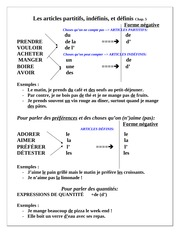 Articles to Use Handout- French 103