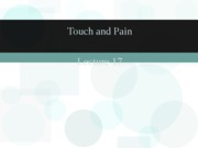 Sensation _ Perception - lecture 17 - touch and pain