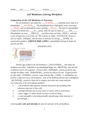 Worksheets Cell Membrane Coloring Worksheet Answers cell membrane coloring worksheet name key date