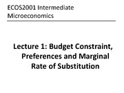 Lecture_1_Intro_BudgetConstr_Preferences_OnlinePostLecture