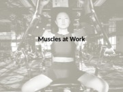 Muscles at Work