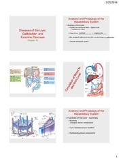 Hepatobiliary_System_1_students_2014