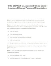 SOC 100 Week 5 Assignment Global Social Issues and Change Paper and Presentation