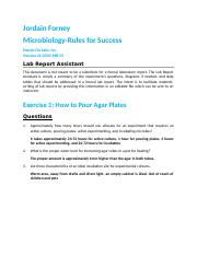 micro rules.docx
