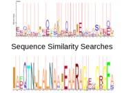 Lec4-SequenceSimilaritySearches