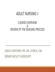 SHU ADULTS I NURSING PROCESS WHOLE LECTURE SP 2016