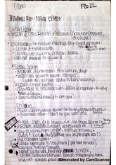 social effects notes