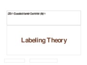 (9) Labeling Theory