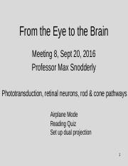 Meeting 8, Sept 20, 2016, Eye to Brain,  Phototransduction, retinal neurons, rod and cone pathways.p