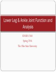 Lab 6 - Low Leg & Ankle Joint Function and Analysis.pdf