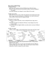 Basic_Forms_of_Bird_Wings_1.docx