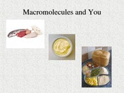 Macromolecules_and_You (2)