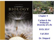Chapter 4 - Carbon and Molecular Diversity