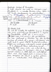 The Genetic Code (lecture notes)