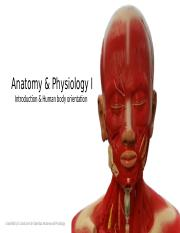 1 A&P Human Body Orientation Lecture 1.pptx