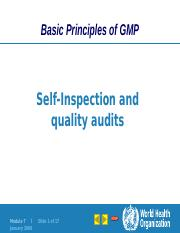 WHO_Self Inspection.pptx