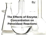 Enzyme Concentration Presentation