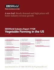 319588712-11120-Vegetable-Farming-in-the-US-Industry-Report