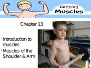 Chapter 13 Muscles of the Shoulder & Arm(1) (1)