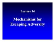 14. Escaping Adversity