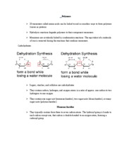 Ch 3 Carbon Atoms and Molecules Rutgers bio 101 pg 2