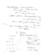 18_Biochemistry Test Notes