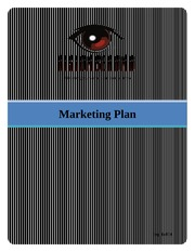 Final Project - Marketing Plan, Vision Beyond