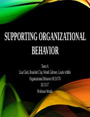 Supporting Organizational Behavior