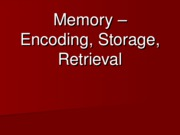 Lecture 12 - Memory Encoding