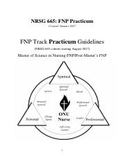 NRSG_665_A-D_FNP_Practicum_Guidelines_Packet_August_2017.pdf