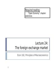 (24) Foreign Exchange Market