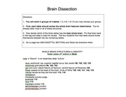 Brain dissection, 2013.pptx [Read-Only]