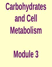 Module 3_BB - Carbohydrates and Cell metabolism.ppt