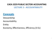 CAEA 3229 _ Lecture 4 - Accountability