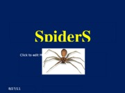 Y39-Spiders-5