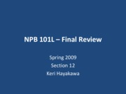 spring2010npb_101l-final_review_handout