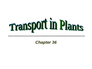 Ch 36-Transport in Plants-Outline