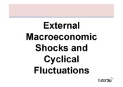 67-external_shocks