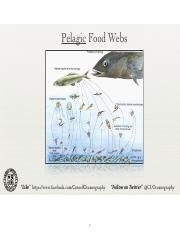 9_FoodWebs(2)